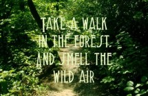nature-quotes-take-a-walk-in-the-forest-215x140