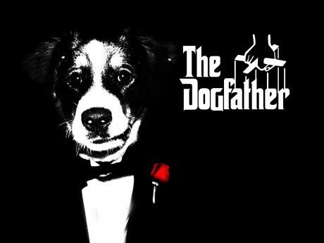 the-dogfather-funny-picture-30508